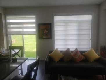 ZEBRA BLINDS VISION BLINDS DUAL SHADES BLACKOUT ZEBRA BLINDS ZEBRA SHADES